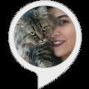 Katzenwelt